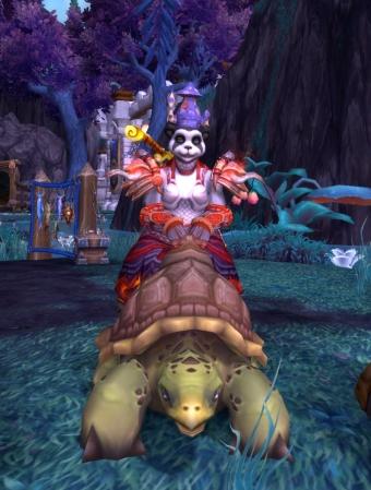 Cinder's ADORABLE riding turtle!